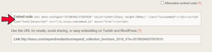step 5- embed code -cropped